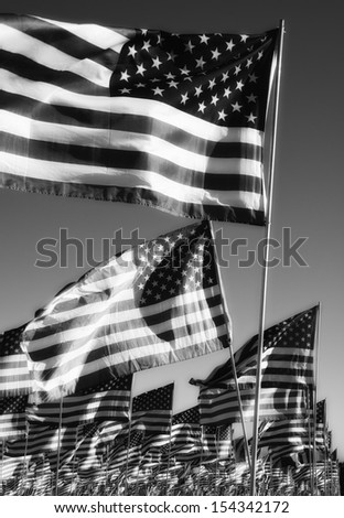 American Flags in tribute - stock photo