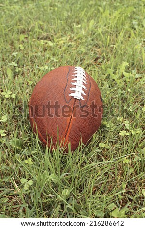 American football ball on a grass. - stock photo