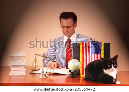 American lawyer working in the office with black and white cat on the table, law and order concept - stock photo