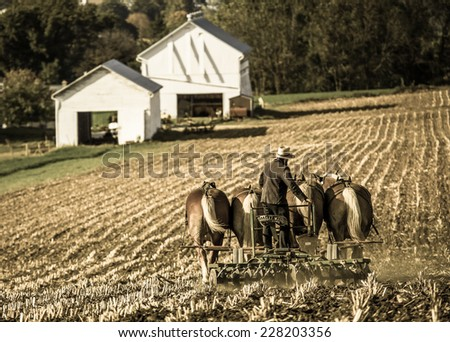 Amish farmer behind horse drawn plow with white barns in background in rural Pennsylvania with retro filter applied. - stock photo