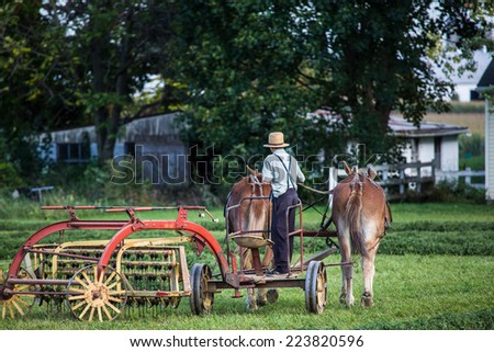 Amish farmer on horse drawn plow working in fields during fall season in rural countryside Lancaster Pennsylvania. - stock photo