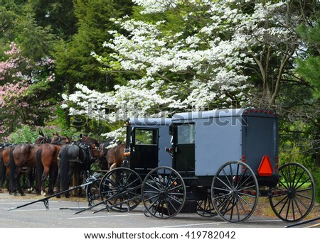 Amish horses and buggies in Lancaster, Pennsylvania - stock photo