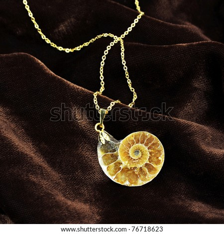 Ammonite pendant - stock photo