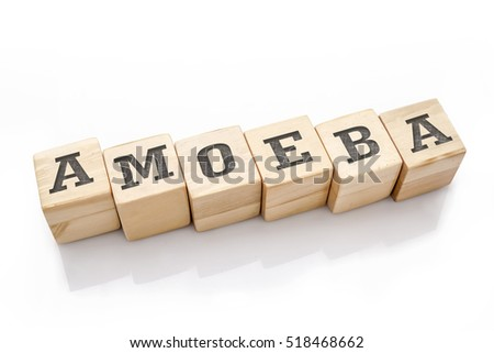 AMOEBA word made with building blocks isolated on white