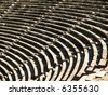 Amphitheater - stock photo