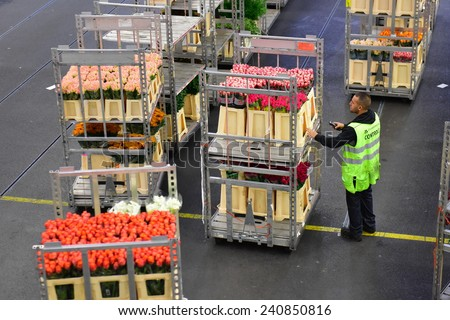 AMSTERDAM - SEPTEMBER 22: A worker scanning a cart of flowers at Aalsmeer FloraHolland, taken on September 22, 2014 in Amsterdam, Netherlands - stock photo