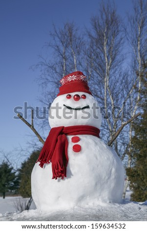 Amusing and festive snowman on a beautiful winter day - stock photo