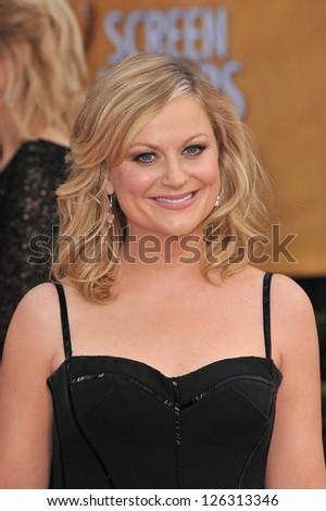 Amy Pohler at the 19th Annual Screen Actors Guild Awards at the Shrine Auditorium, Los Angeles. January 27, 2013  Los Angeles, CA Picture: Paul Smith - stock photo