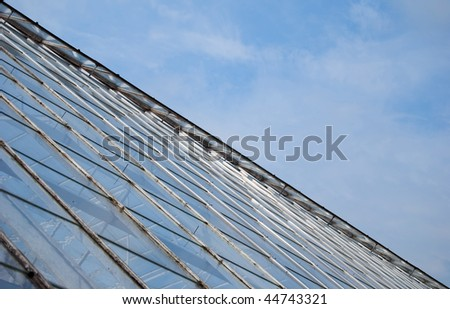 An abstract view of an old and abandoned greenhouse outside of Aarhus in Denmark.