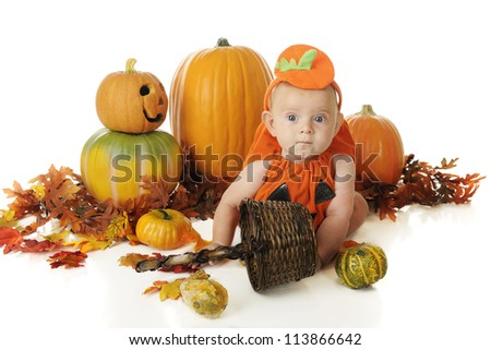 An adorable baby in a pumpkin costume sitting among pumpkins, fall leaves and a basket of gourds.  On a white basket.