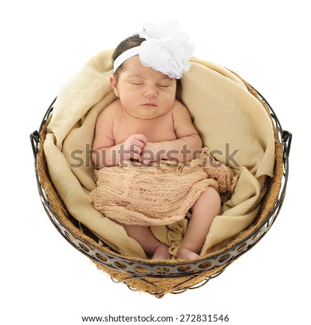 "An adorable newborn girl sleeping comfortably in a round basket ""nest""   On a white background. - stock photo"