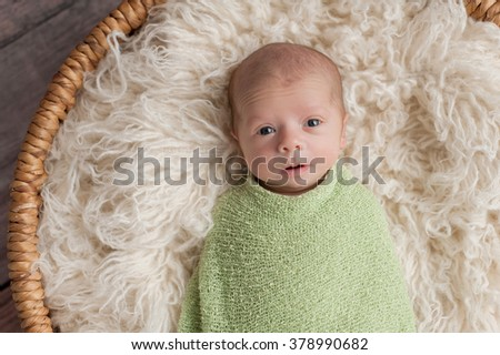 An alert, four week old, newborn baby boy with cute expression. He is swaddled in a light green wrap and lying in a round, wicker basket. - stock photo