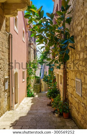 An alley in the old city of Korcula, in Dalmatia, Croatia