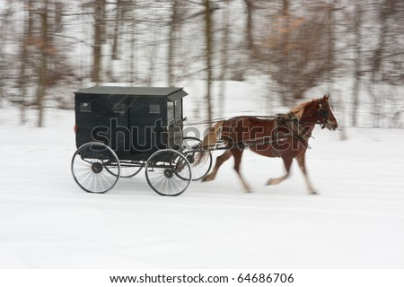 An Amish horse and buggy driving along a snowy winter road, with panning motion blur on everything but horse and carriage. - stock photo