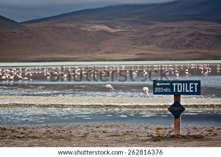 An amusing sign in the middle of the Atacama Desert. - stock photo