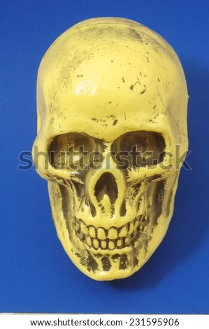 An Ancient Yellow Skull on a Colored Background - stock photo