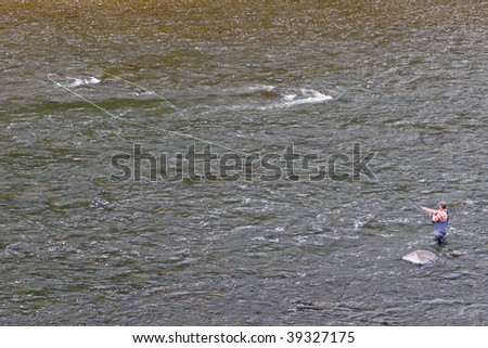 An angler fishes for steelhead with a spey rod - stock photo