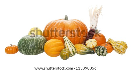 An arrangement of freshly harvested pumpkins, squashes, and gourds.  Shot on white background. - stock photo