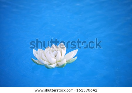 An artificial water lily floating on blue water  - stock photo