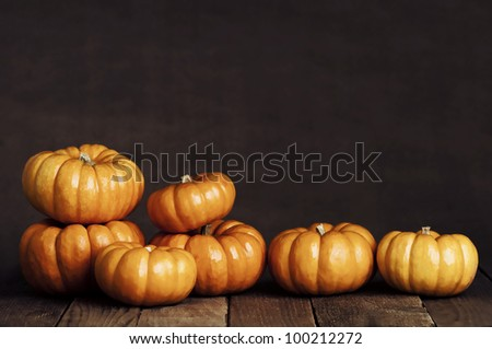 An Artistic, Dramatic Closeup of Small Pumpkins in a Line Sitting on Rustic Old Wooden Boards with Copy Space - stock photo