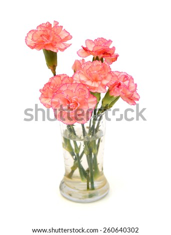 An assorted carnation bouquet in glass vase on white background - stock photo