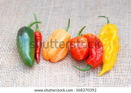 An assortment of hot peppers on a burlap background - stock photo