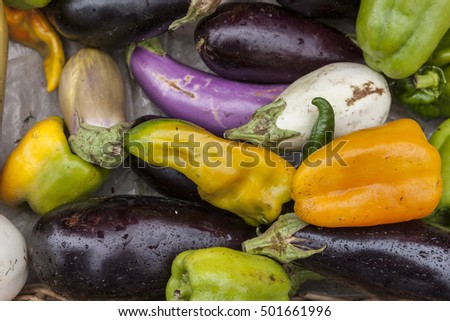 An assortment of peppers and eggplants on display.