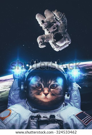 An astronaut cat floats above Earth. Stars provide the background. Elements of this Image Furnished by NASA. - stock photo