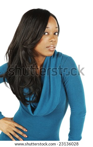 An attractive African American woman. - stock photo