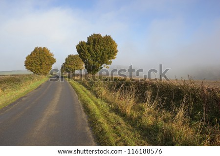 an autumn landscape with early morning mist rising over trees and hedgerows by a rural highway