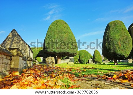 An Autumn view of St Mary's Church grounds, fallen leaves and Yew tree's in beautiful early morning light and shadow, Painswick, The Cotswolds, England, United kingdom - stock photo