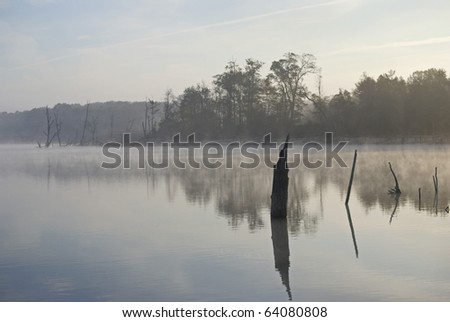 An early morning foggy view of the Manasquan Reservoir in New Jersey. - stock photo