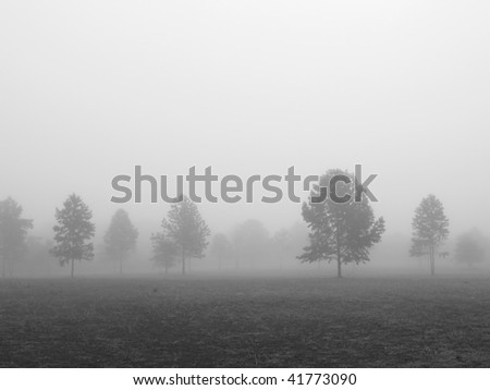 An early morning foggy view of this field with trees in Thompson Grove Park in Manalapan, New Jersey in black and white. - stock photo