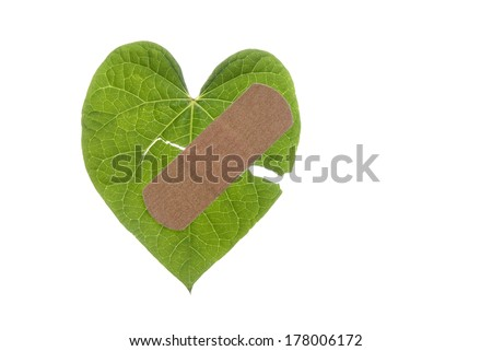 An Earth Day concept of a broken heart shaped leaf with a bandaid. - stock photo