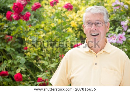 An elderly man is smiling to the left of the camera with a beautiful rose background - stock photo