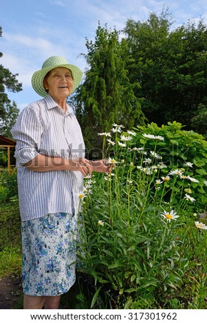An elderly woman rejoices near Bush garden Daisy summer cottage on a Sunny afternoon in the suburbs of St. Petersburg. - stock photo