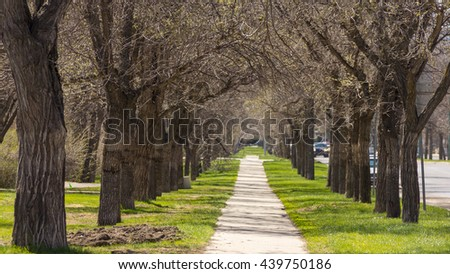 An empty pedestrian walkway in Downtown Regina, with trees and mowed grass on each side - stock photo