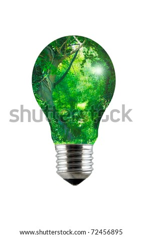 An enchanted forest inside a lightbulb - stock photo