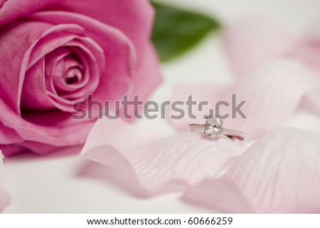 An engagement diamond ring lying on flower petals, pink rose in the background. - stock photo