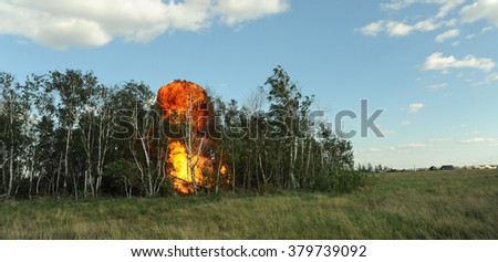 An explosion in the forest - stock photo