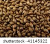 An Extra Large Bag of Roasted Barley - stock photo