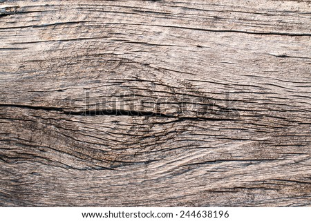 An eye of old wood texture - stock photo