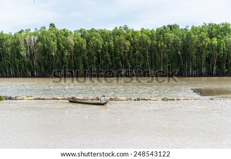 An Giang, Vietnam - Nov 29, 2014: Wide view of Tra Su flooded indigo plant forest