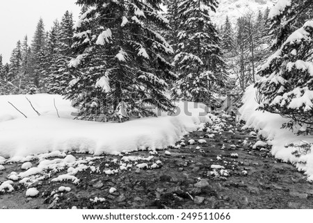 An icy stream flows across a winter mountain landscape covered with fresh snow. - stock photo