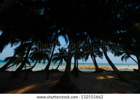 An idyllic set of palm trees lean away towards the turquoise waters of the ocean on the tourist destination of beach number 5 of Havelock Island of the Andaman and Nicobar Islands of India - stock photo