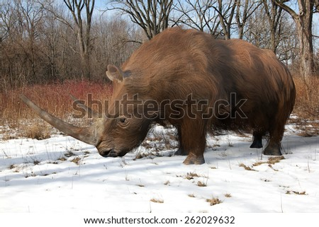 An illustration of the extinct Woolly Rhinoceros slowing making his way through an Ice Age forest. The woolly rhinoceros was a member of the Pleistocene megafauna, common throughout Europe. - stock photo