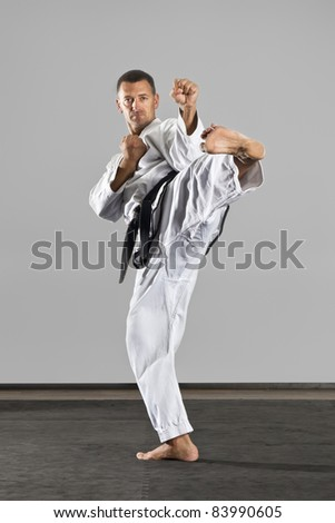 An image of a martial arts master - stock photo