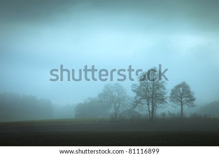 An image of a nice dreamy colored forest background - stock photo