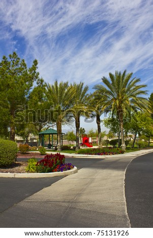 An image of a palm tree park and driveway.