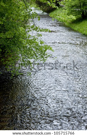 An image of a refreshing and tranquil stream of water amidst lush, green trees. - stock photo